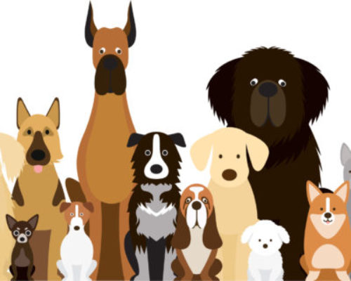 Group of Dog Breeds Illustration